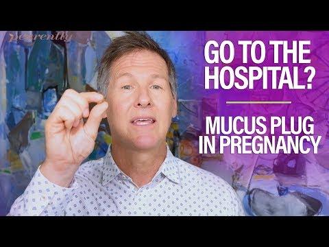 Mucus Plug Pregnancy