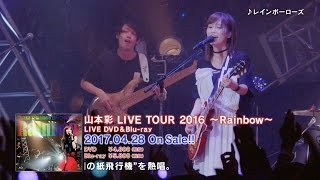 「山本彩 LIVE TOUR 2016 ~Rainbow~」 [DVD&Blu-ray] 山本彩 動画 14