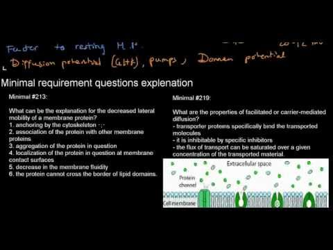 lecture 18 part 3 (Donnan potential, minimals, question answering)