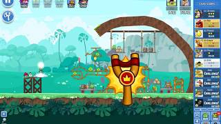 Angry Birds Friends tournament, week 342/B, level 2