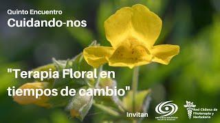 Terapia Floral en tiempos de cambio