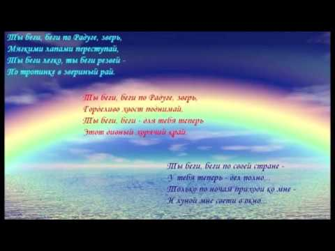 озёр стихи собакам ушедшим на радугу лесные