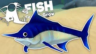 level 100 swordfish kills great white shark new fish update feed and grow fish gameplay
