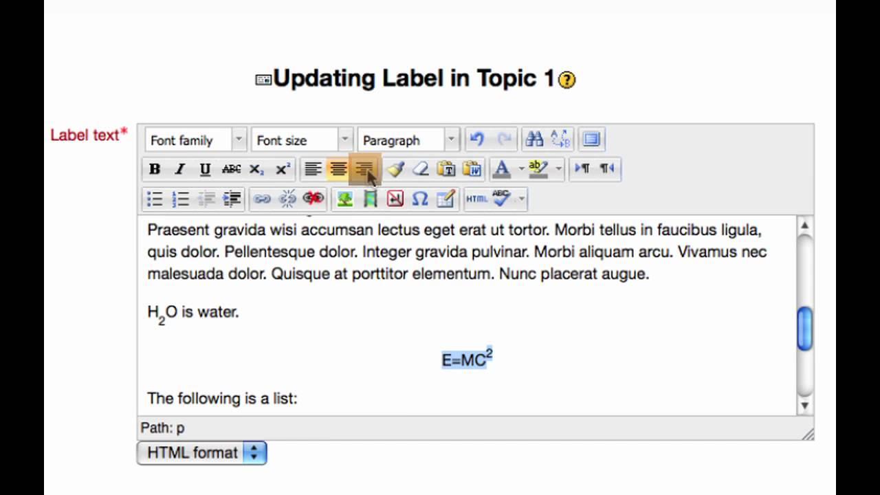 Moodle 2 HTML TinyMCE Editor (Row 2)
