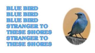"""Blue Bird"" from the last 10cc studio album MirrorMirror released i..."