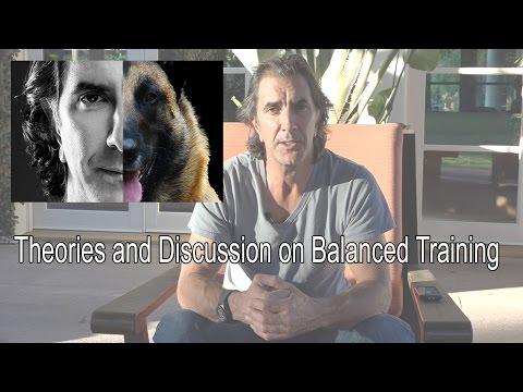 Robert Cabral's Dog Training Introduction - Balanced & Successful Dog Training