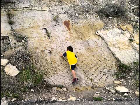 A day at Dinosaur Ridge(3)