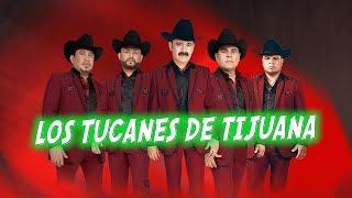 LOS REYES DEL REGIONAL MEXICANO | LOS TUCANES DE TIJUANA