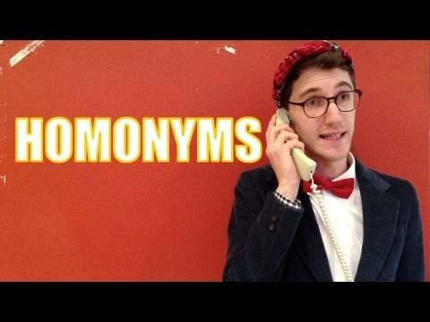 Psy / Sigh - Homonyms - Mr. Palindrome