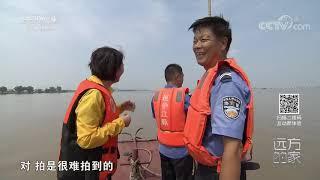 《远方的家》 20191112 长江行(68) 江湖交汇处的美丽家园| CCTV中文国际