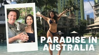 WHAT TO DO IN CAIRNS | Australia | Koalas, Waterfall Hikes & Food
