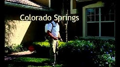 Cooks Pest Control Colorado Springs Co Exterminator Bed Bugs