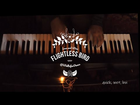 Flightless Bird (American Mouth) Piano Cover