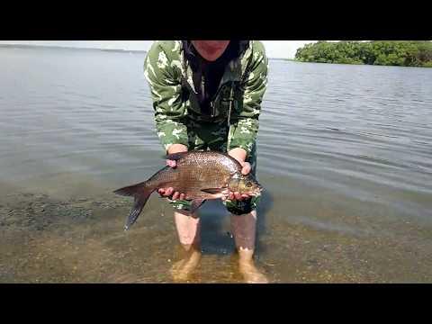 рыбалка на можайском водохранилище 2017