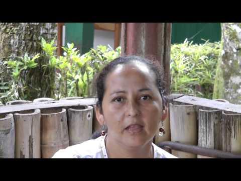Sister Parish short video
