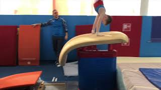 Первенство Олимпии. Спортивная гимнастика. Первый юношеский разряд