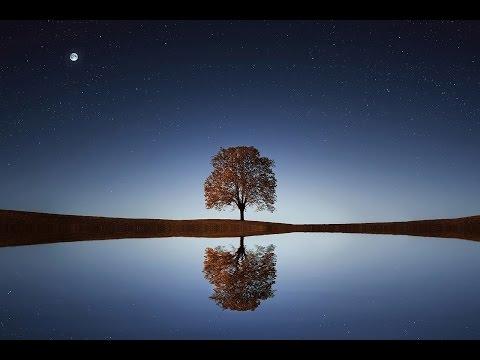 L' Éveil (au Cœur de la Présence) ❤ - avec Pierre Leré Guillemet