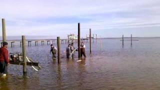 video-2009-12-29-14-23-14