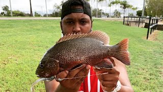 Townsville Weather || Big Fish