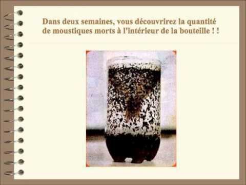 Fabrication d 39 un anti moustiques colo et naturel youtube for Anti fouine maison