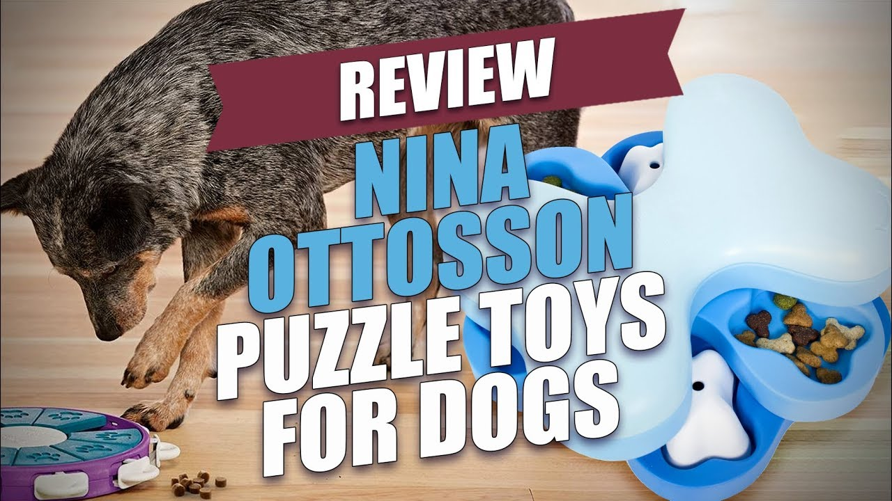 Nina Ottosson Puzzle Toys For Dogs