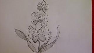 Рисуем орхидею. Рисуем цветы.  Уроки рисования. Просто(Здравствуйте! Предлагаю вашему вниманию видеоролик, где я показываю, как очень просто нарисовать цветок..., 2015-06-23T14:12:17.000Z)