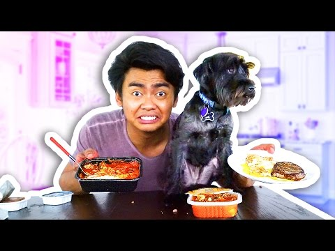 Thumbnail: DOG FOOD VS HUMAN FOOD!