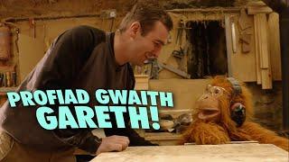 Gethin Pyrs (Saer Coed) - Profiad Gwaith Gareth!