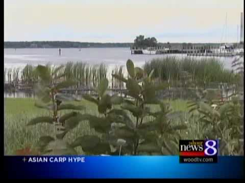 Asian carp latest in line of invaders