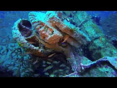 U 352 Dive