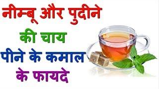 Amazing Health Benefits Of Pudina Lemon Tea