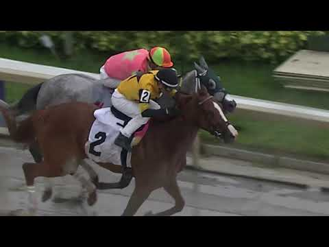 Gulfstream Park Replay show | May 26, 2018