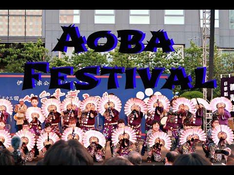 Aoba Festival | Bonus Dolphin Show