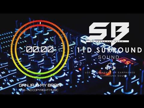 Ganja is My Brain 11D Surround Sound | SB-No Copyright Music