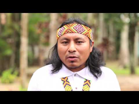 Amazônia pela democracia