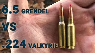 Ammo Showdown: 6.5 Grendel Vs .224 Valkyrie