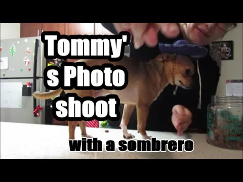 Tommy's Photo-shoot 11.21.19 Day 2339