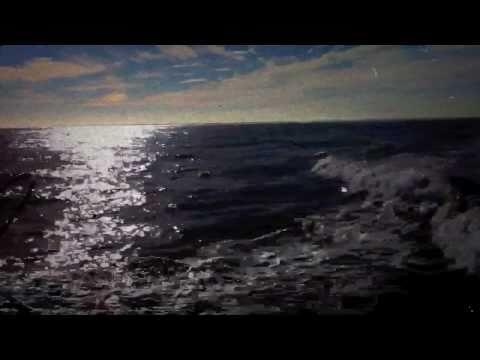 Work Drugs - Third Wave