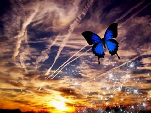Corinne Bailey Rae - Butterfly (Lyrics)