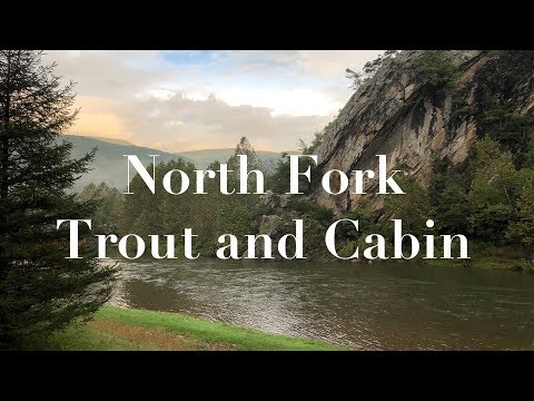 North Fork Trout And Cabin