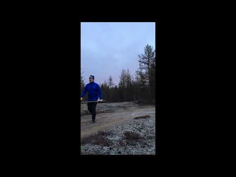 How we take care our forests in Finland?!