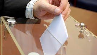 28 мая – предварительное голосование