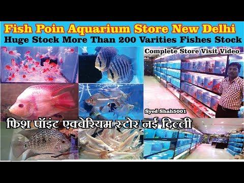 Aquarium Fish Store Visit In New Delhi | फिश पॉइंट एक्वेरियम स्टोर नई दिल्ली