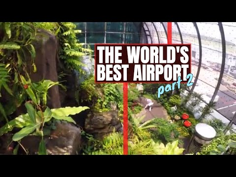 THE BEST AIRPORT IN THE WORLD: Butterfly Garden & More -- Changi Airport, Singapore//215