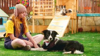 בית הכלבים 2: צ'יקו ותוםתום נעלמים במזוודה - ניקלודיאון
