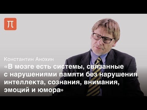 Потерянная память и история H.M. - Константин Анохин