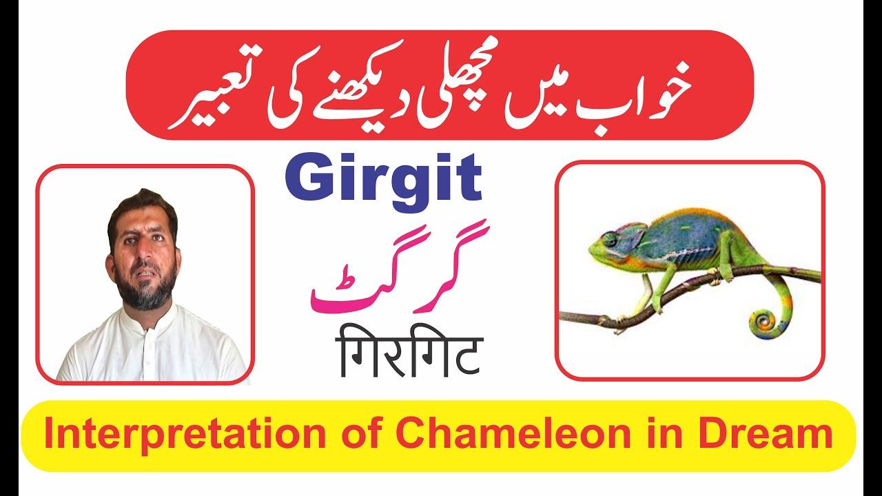 Interpretation of Chameleon in dream || Khwab mein Girgit dekhna || خواب میں گرگٹ دیکھنے کی تعبیر