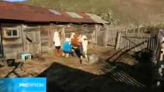 видео Туризм и отдых в Алтайском крае (Россия)