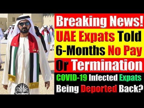 UAE Expats Informed