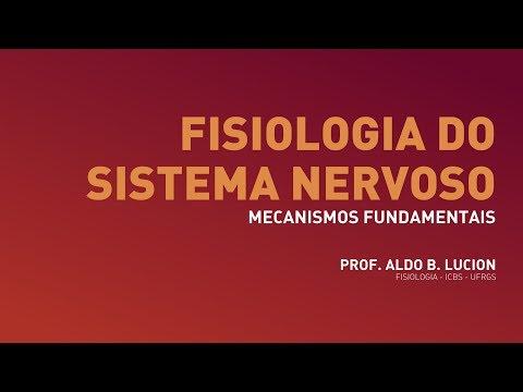 Cerebelo - Aula 1 | Neurofisiologia